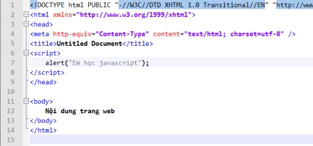 vidu1_javascript